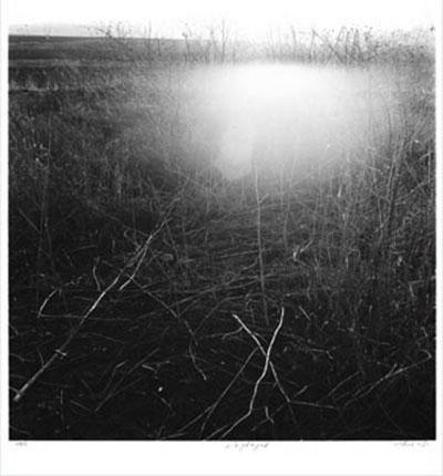 דליה אמוץ - מתוך סדרת תצלומי השדות, 1984