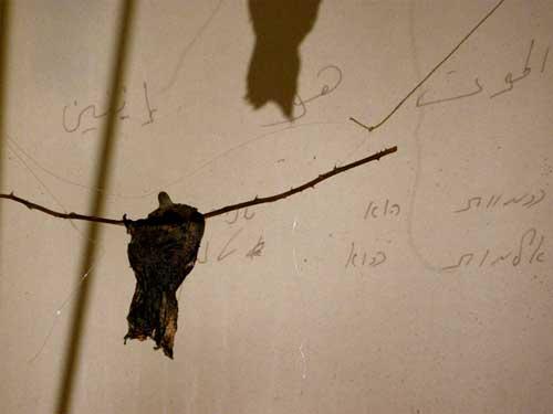 """""""שששששש"""" הגר יולזרי וחנה בן-חיים יולזרי. צילום מתוך מיצב בתערוכה """" אחוזים"""" פרויקט מנופים,  2009"""
